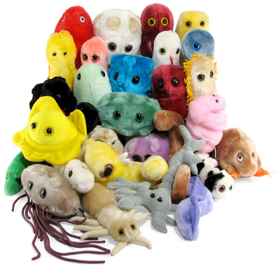 Learn all your fun diseases in adorable plush toy form.