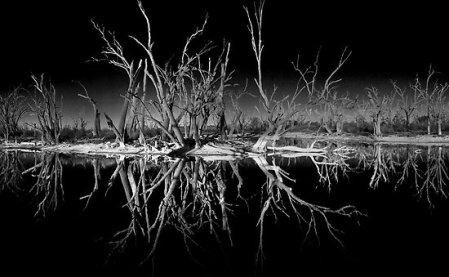 2696347-2-nighttime-reflections
